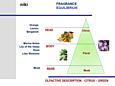 Mr&Mrs Fragrance vôňa do auta FIORELLINO - Equilibrium